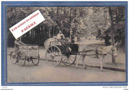 Carte Postale 03. Vichy Chateau Robert âne  Tricycle Trés Beau Plan - Vichy