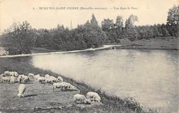 Woluwé-Saint-Pierre - Vue Dans Le Parc - Ed. Walschaerts - Woluwe-St-Pierre - St-Pieters-Woluwe