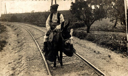 ZARAGOZA CHUFLA CHUFLA  JOVEN ARAGONÉS EN BURRO ANE DONKEY EZEL Donkeycollection    ARAGON ESPAÑA ESPAGNE - Zaragoza