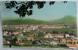Carte Postale : Navarra : ALSASUA : Vista General, Timbre En 1959 - Navarra (Pamplona)