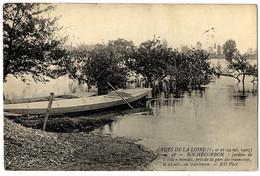 37  ROCHECORBON   JARDINS DE L ILE INONDES PRES DE LA GARE DES TRAMWAYS    CRUE DE LA LOIRE 1907 - Rochecorbon