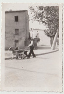 Petite Photo Originale Piana (Corse)  Eleveur De Chèvres Dans La Rue   Vacances 1933 - Plaatsen