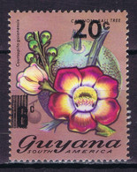 Guyana Overprint New Value On Previous Stamps Lot #9 - Guyana (1966-...)