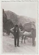 Petite Photo Originale Environs De Piana   (Corse)  Paysans  Transport Par Ane Dans Les Calanques  Vacances 1933 - Plaatsen