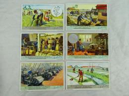 Liebig Chromo - De Vlasnijverheid In Belgie - 1939 - Liebig