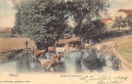 ATHUS (Lux.) Vaches à L'abreuvoir - Autres