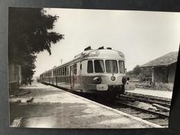 Photographie Originale De J.BAZIN :Rame  RGP à MARIGNY -Les- USAGES , Ligne ORLEANS- MALESHERBES  En 1967 - Trenes