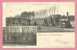 57 - BITSCH - BITCHE - Kantine - Feldbahn - Waldbahn - Locomotive - Train à Voie étroite - Transport Du Bois - 3 Scans - Bitche