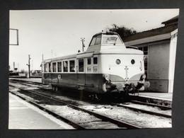 Photographie Originale De J.BAZIN : Train En Gare De MALESHERBES , Ligne ORLEANS- MALESHERBES En 1966 - Trenes