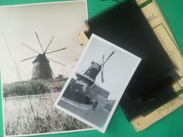 MOLEN WASSEMAAR EN 1948 MOULIN À VENT WINDMILL PAYS-BAS HOLLANDE NEDERLAND PHOTO + 5 NÉGATIF  + CARTE POSTALE PORTUGAL - Lieux