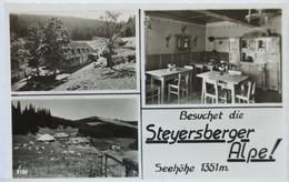 Steyersberger Alpe, Otterthal Am Wechsel, Fotokarte (9632) - Non Classificati