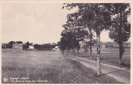DEND Jamoigne S Semois Cote Ouest Et Route Vers Florenville - Other