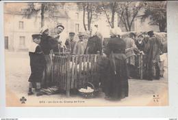 RT32.049  PUY-DE-DOME   UN COIN DU CHAMP DE FOIRE.COCHONS. GORETS.N° 502 M.T.I.L. - Foires