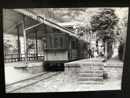 Photographie Originale De J.BAZIN: Lignes électriques Des Pyrénées : TRAMWAY De La  RAILLERE, CAUTERETS En 1959 - Trains