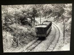 Photographie Originale De J.BAZIN: Lignes électriques Des Pyrénées: TRAMWAY De La RAILLERE , Près De La Raillere En 1959 - Trains