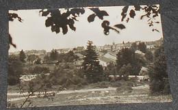 39 - Bonlieu  - ( Jura ) - Vue Générale ::: Photographie Pour Tirage Carte Postale --------- Alb 3 - Other Municipalities