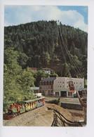 La Bourboule : Le Petit Train Du Parc Fenestre Et Le Téléférique De Charlannes (cp Vierge N°76 Lys) - La Bourboule