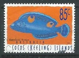 Iles Cocos (Keeling) YT N°333 Poisson Coris Aygula Oblitéré ° - Cocos (Keeling) Islands