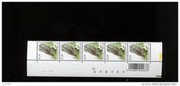 ABD0942 PAAR 3624 Buzin OWL 0.10€ 24/1/2007 Datumstrook Bande Datée - 1985-.. Birds (Buzin)