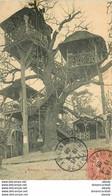 PHL 92 LE PLESSIS ROBINSON. Restaurant Dans Les Arbres Avec Poulies 1906 - Le Plessis Robinson