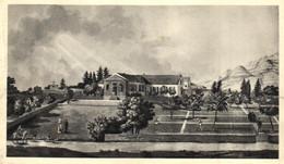 Afrique - Sainte Helène - Longwood -   Moutarde Amora - E 5295 - Sainte-Hélène