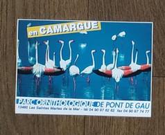 AUTOCOLLANT STICKER - PARC ORNITHOLOGIQUE DE PONT DE GAU 13460 SAINTES MARIES DE LA MER - CAMARGUE - OISEAUX NATURE - Stickers