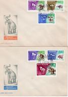 ROMANIA 1966: PREHISTORIC ANIMALS, 2 FDCs - Registered Shipping! - Preistorici