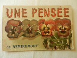 CPA  REMIREMONT   Une Pensée De Remiremont - Remiremont