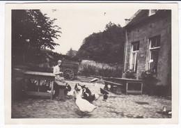 BELGIQUE UCCLE COUR DE FERME 1929 - Places