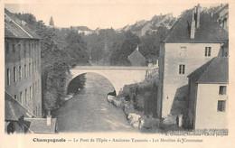 Champagnole Pont De L'Epée Tannerie Moulins Moulin Greusard Jacques - Champagnole