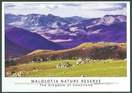 Lot Collection 14 Postcards Kingdom Of Swaziland Eswatini Mbabane Native Costume Dance Ceremony - Swazilandia