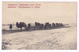 Astrachan Fish Ttransport In Winter Time - Russie