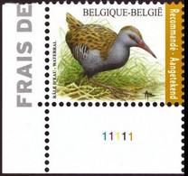 4671** PLANCHE I - Râle D'eau / Water Rammelaar - Recommandé / Aantekenport - BUZIN - BELGIQUE - BELGIË - 2011-..