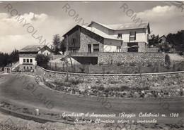 """CARTOLINA  GAMBARIE D""""ASPROMONTE ,REGGGIO CALABRIA M.1300,STAZIONE CLIMATICA ESTIVA E INVERNABEL,VIAGGIATA 1958 - Reggio Calabria"""