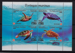 CUBA 2020. TORTUGAS MARINAS. MARINE TURTLE. FORMATO ESPECIAL MNH - Nuevos