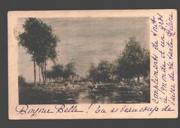 Kontich (verzonden Uit) - Landschap - Verzonden 'Contich' 1902 - Kontich