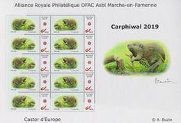 "Vel MyStamps ""Europese Otter"" O.F.A.C. Carphiwal 2019 André Buzin - 1985-.. Oiseaux (Buzin)"