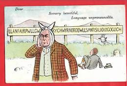 DENTIST DENTISTRY  MEDICAL  COMIC HUMOUR  Pu 1906 - Humor