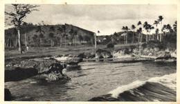 Trinidad - Trinité - Bord De Mer - Moutarde Amora - E 5301 - Trinidad