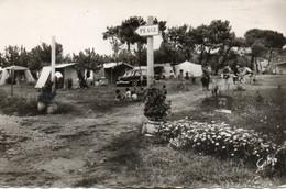 île De Ré - La Noue - Camping Des Grenettes - Ile De Ré