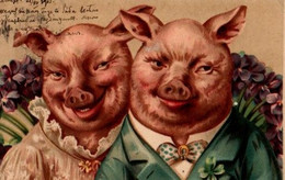 Illustrée : Couple De Cochons Humanisés - Pigs