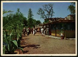 HAMBURG 1956, SONDER-PK ZUR BUNDESGARTENSCHAU HAMBURG 1953, STPL AUS 1956 - Unclassified
