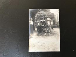 Photo - 1913 - Vaches Décorées BOURG EN BRESSE St Georges - Plaatsen