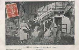 """CPA - La """"Heste Dou Porc"""" Dans Les Landes - Other Municipalities"""
