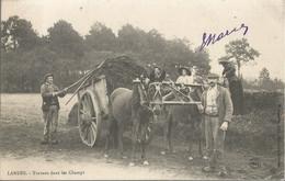 CPA - Landes - Travaux Dans Les Champs - 1905 - Other Municipalities