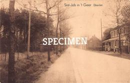 Eikenlei @ Sint-Job-in-'t-Goor - Brecht