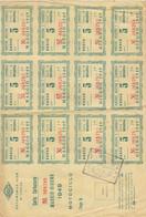 10152-CARTA CARBURANTE MAGGIO-GIUGNO 1949-BUONO BENZINA - Italia