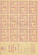 10153-CARTA CARBURANTE LUGLIO-AGOSTO 1949-BUONO BENZINA - Italia