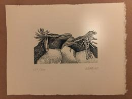 Gravure De C. Andreotto Couleur Sur Papier Velin (320 X 250)TAAF N° 502 (Gorfou Sauteur) - Imperforates, Proofs & Errors