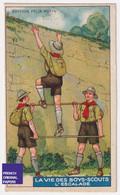 Chromo / Image Félix Potin - Vie Des Boys-Scouts - Boy Scout Scoutisme Enfant Escalade Sport Climbing A53-37 - Félix Potin
